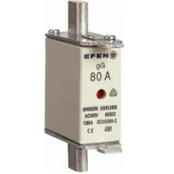 NH-SI 00 40A GG AC500V AK