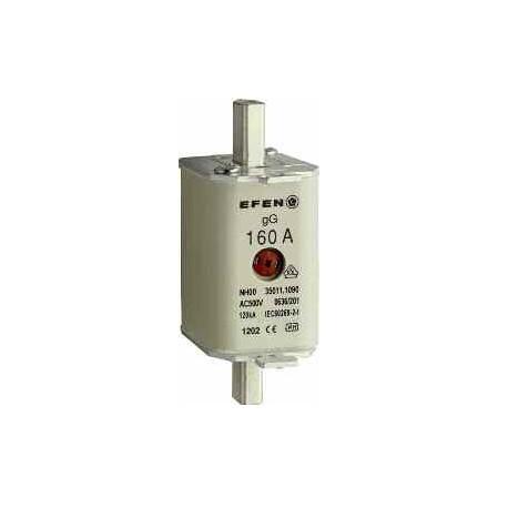 NH-SI 00 125A GL AG AC500V