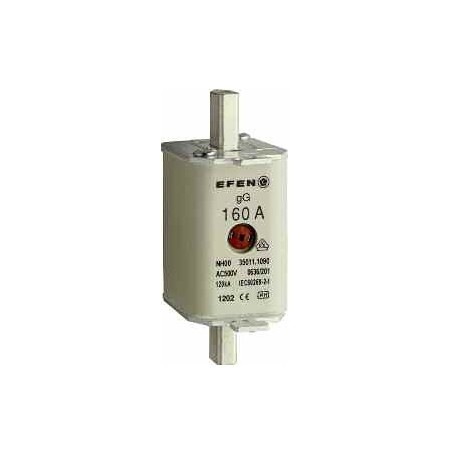 NH-SI 00 160A GL AG AC500V