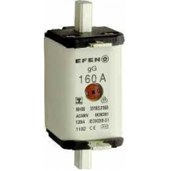 NH-SI 00 25A GL AG AC500V LI