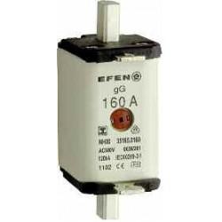 NH-SI 1 50A GL AG AC500V LI